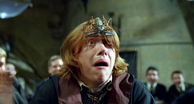 théories Harry Potter